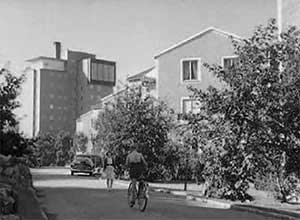 1956_300x220